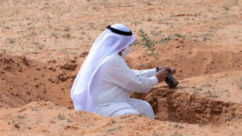 محمية الملك عبدالعزيز الملكية تزرع 100 ألف شتلة - المواطن