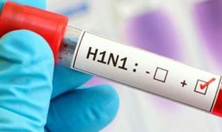 عودة أنفلونزا الخنازير: احتياطات هامة ومحاذير
