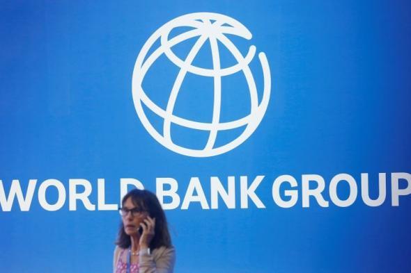 البنك الدولي يحث مجموعة العشرين على عدم فرض قيود على تصدير الإمدادات الضرورية لمحاربة فيروس كورونا