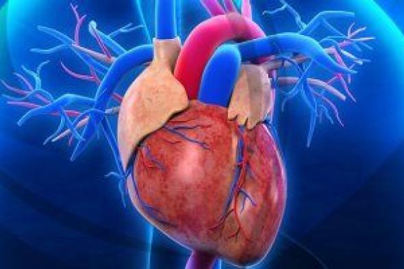 س و ج.. ما هى علامات سوء صحة القلب عند الشباب؟