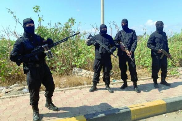 الأمم المتحدة: أردوغان مستمر في نقل السلاح إلى ليبيا