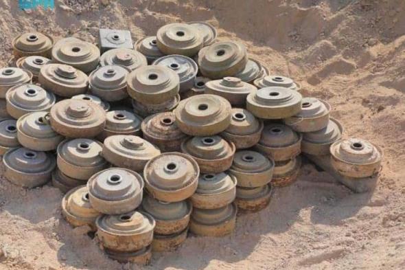 مشروع مسام ينتزع 1,557 لغماً في اليمن