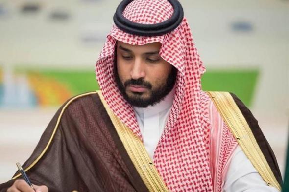 ولي العهد يطلق استراتيجية استدامة الرياض.. والكشف عن الهدف منها والقطاعات المستهدفة